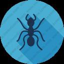 Download Ant Vector Icon Inventicons