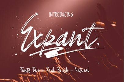 Expant (Fonts Duo + Swash)