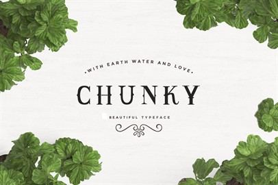 Chunky Typeface
